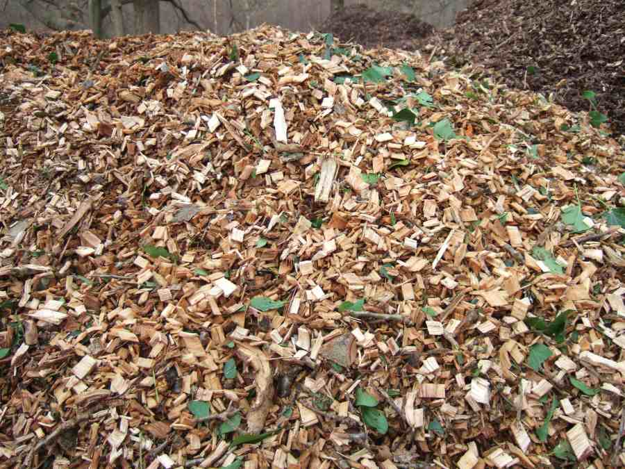 Woodchip for mulch