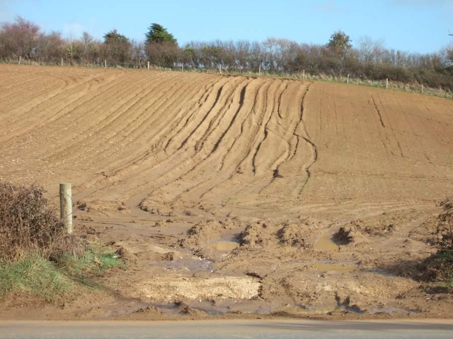 The climate friendly gardener types soil for Soil erosion causes