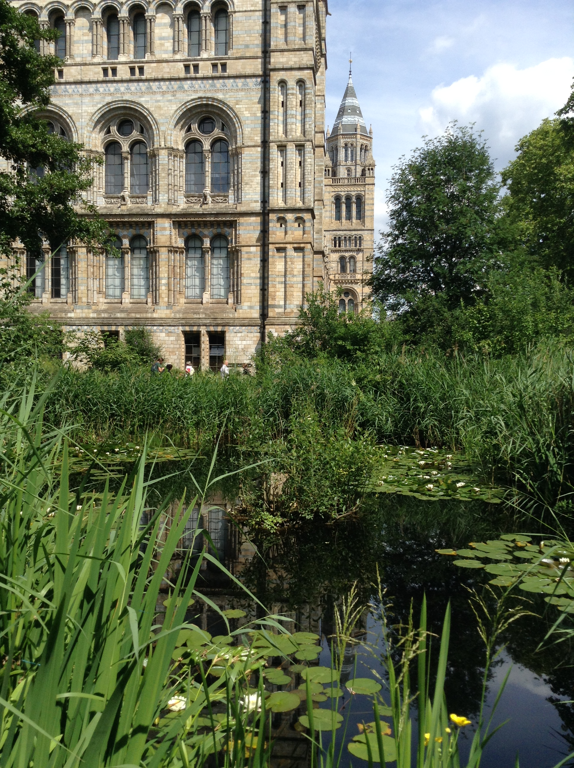 Natural History Museum Wildlife Garden (Wildlife Gardening Forum soil biodiversity conference visible in the distance)